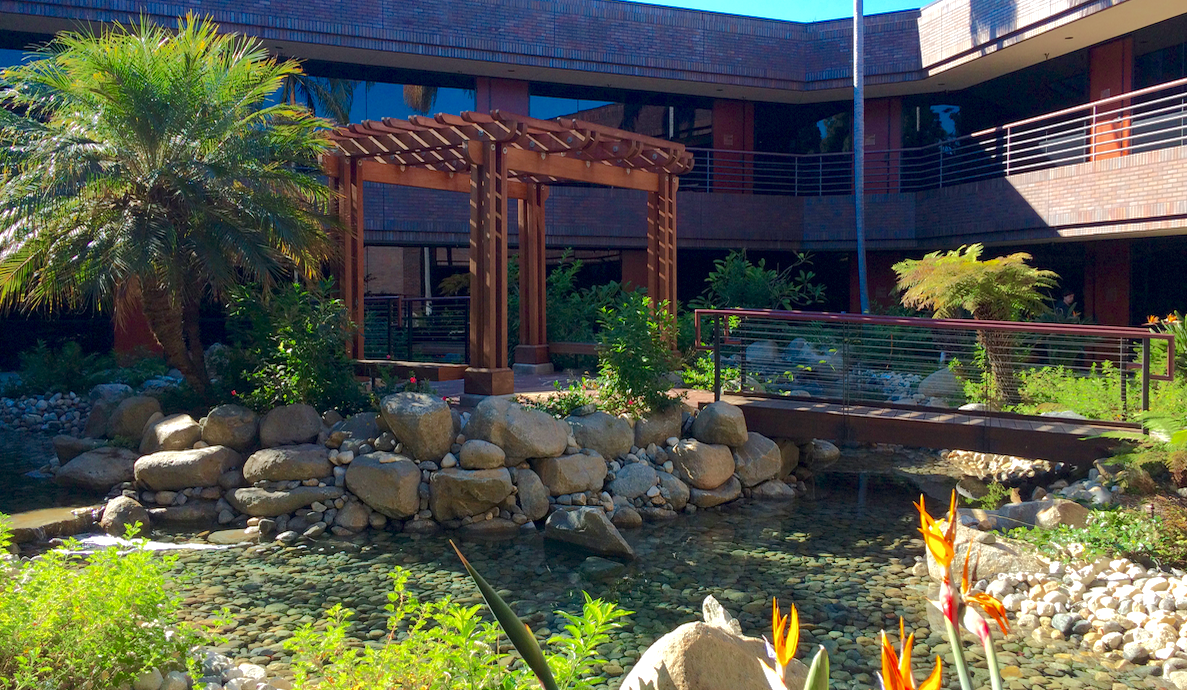 Carlsbad Physical Therapy garden